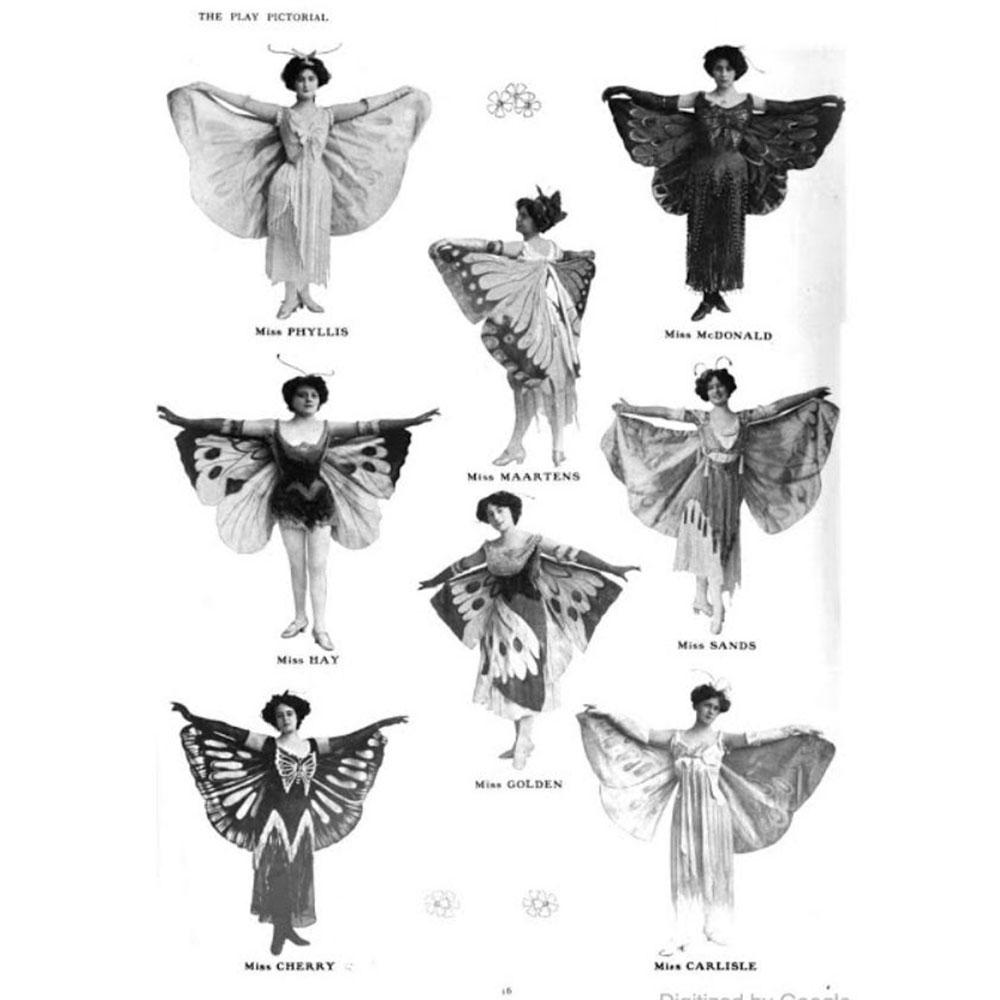 Wiener Museum Butterflies