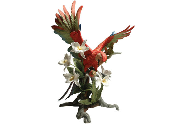 Orange-Macaw-Gallery