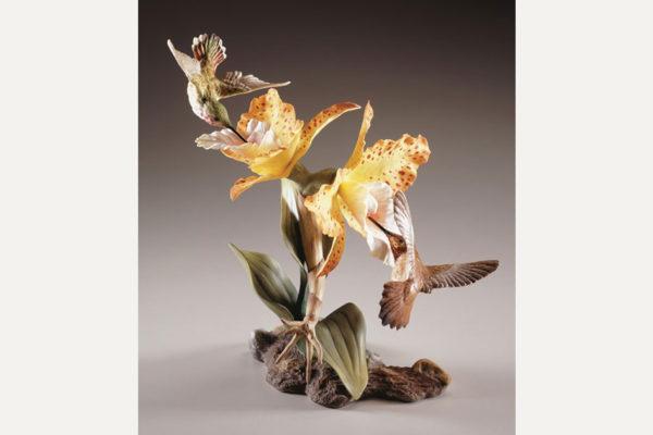 Rufous-Hummingbirds-Cattleya-Orchids